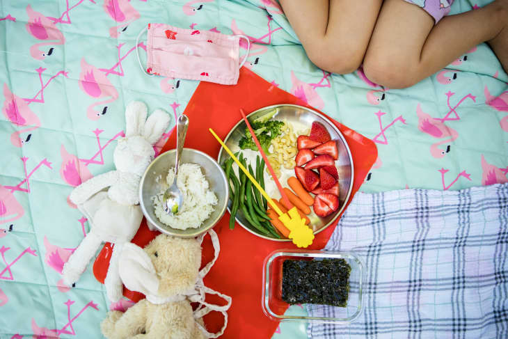 Eleanor's stuffed animals, a bowl of rice, and plate of veggies and fruits on a picnic blanket
