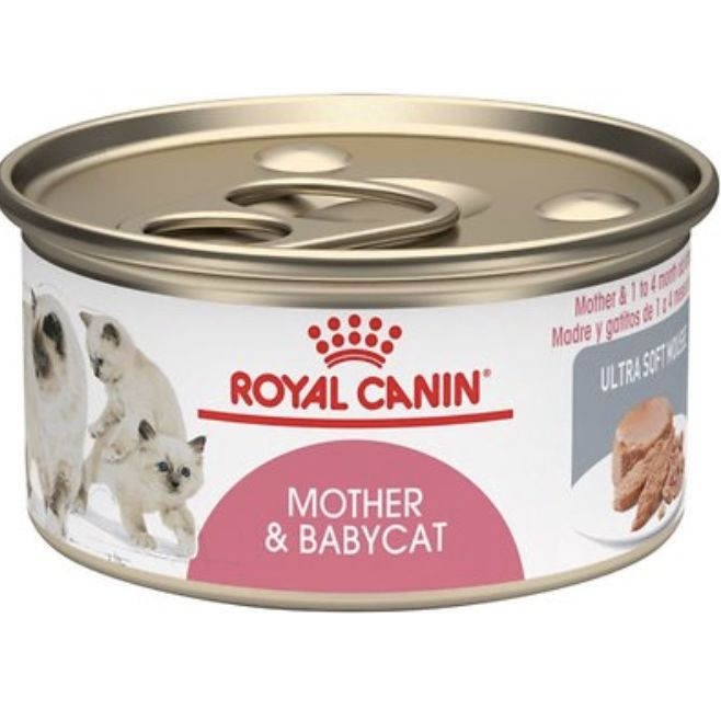 Best Adult Cat And Kitten Food Brands According To A Vet Kitchn,Kabocha Squash Size