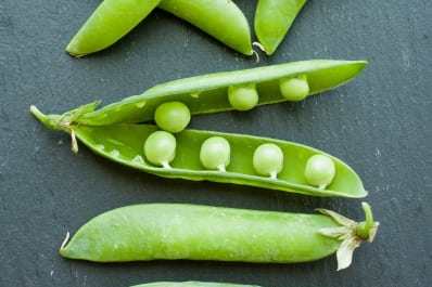 what s the difference between snow peas snap peas and garden peas