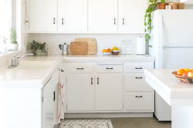 Painting Ideas Neutral Kitchen Cabinet Colors Apartment Therapy - The-newest-trend-for-the-apartments-let-the-color-get-inside