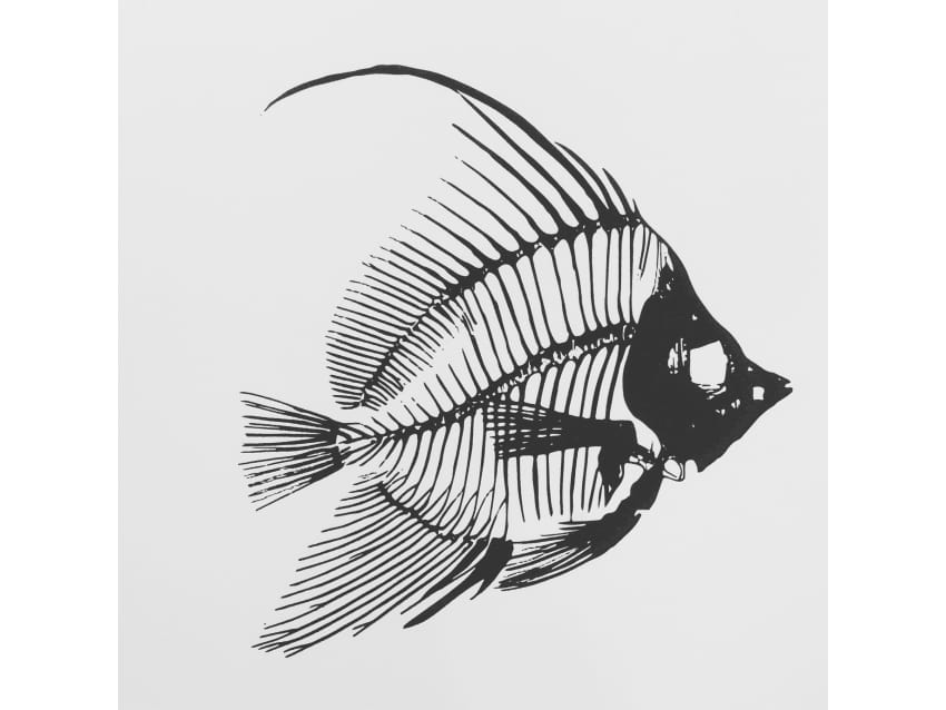Fish art print, fish skeletal anatomy, fish bones - Apartment ...