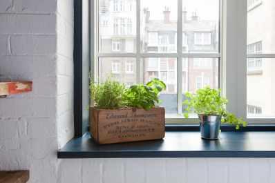 Indoor herb garden diy ideas apartment therapy solutioingenieria Choice Image