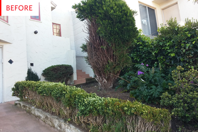 front yard landscaping ideas curb appeal before after apartment