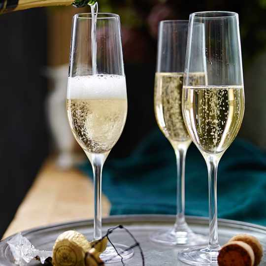 Open Kitchen Champagne Flutes