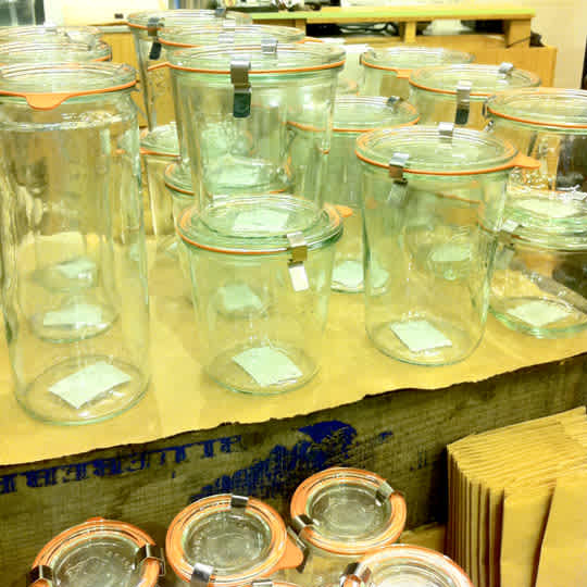 Weck Canning Jars