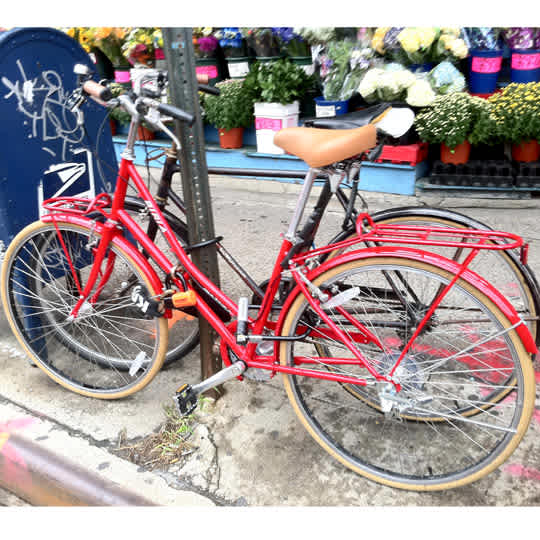 Beria 700c Lady's Bike