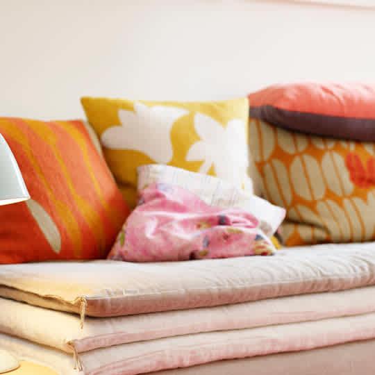 Seeds Pillow by Judy Ross