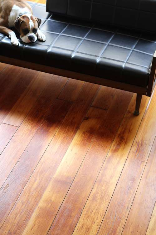 How To Clean Hardwood Floors With Black Tea Apartment Therapy