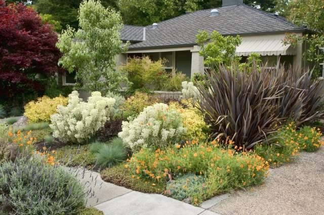 How Much Did It Cost to Landscape Your Yard? | Apartment Therapy How To Landscape Your Yard on french modern landscape yard, edible landscape ideas back yard, shrubs to decorate the front yard, large back yard,