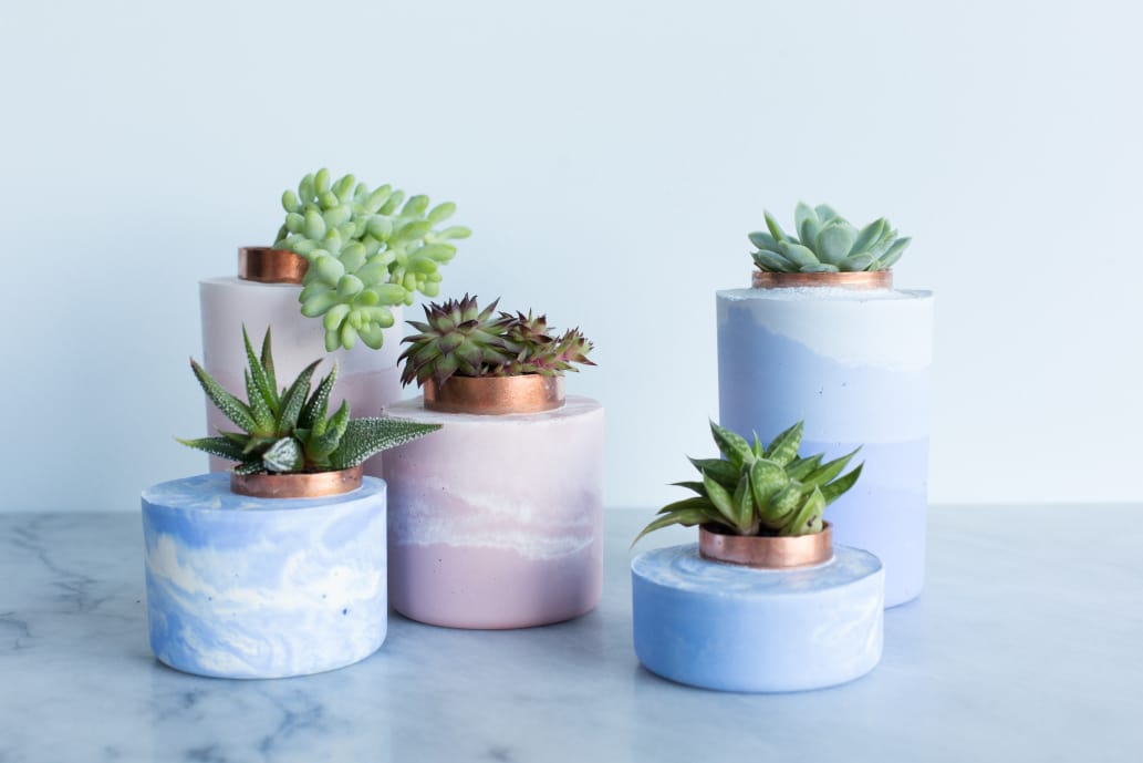 concrete planters with succulents on marble