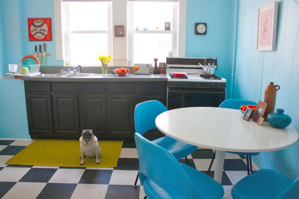 blue-kitchen-pug