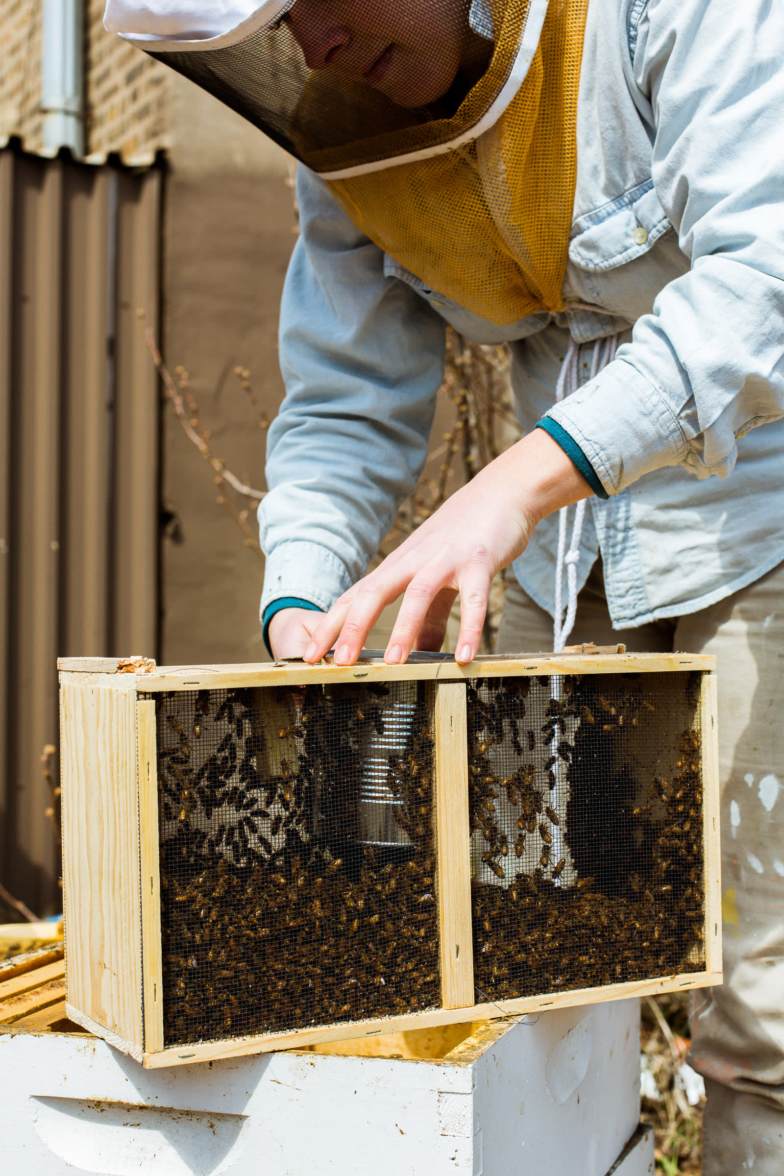 A Visit with Jana Kinsman of Bike a Bee: Building Hives &amp ...