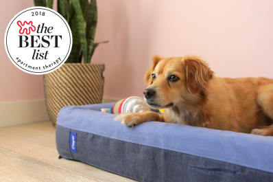 The Best Stylish Dog Beds Of 2018 Apartment Therapy