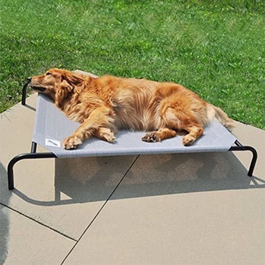 Gale Pacific Coolaroo Elevated Dog Bed