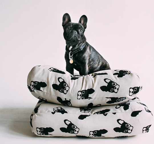Zana Products Frenchie Pattern Floor Cushion
