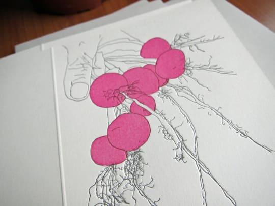 Ravishing Radish Letterpress Cards from Lark Press