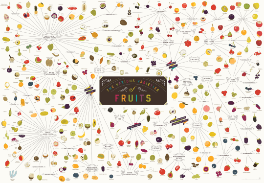 The Various Varieties of Fruits from Pop Chart Lab