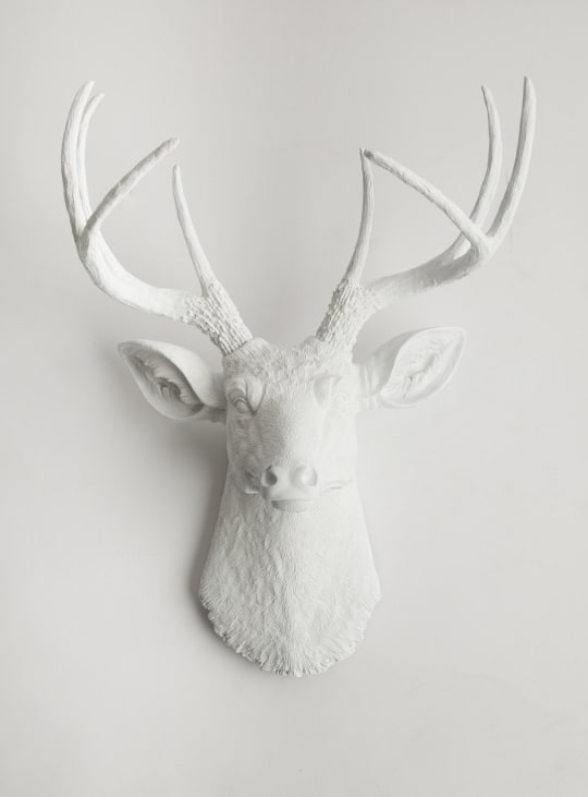The Templeton Deer Stag Head