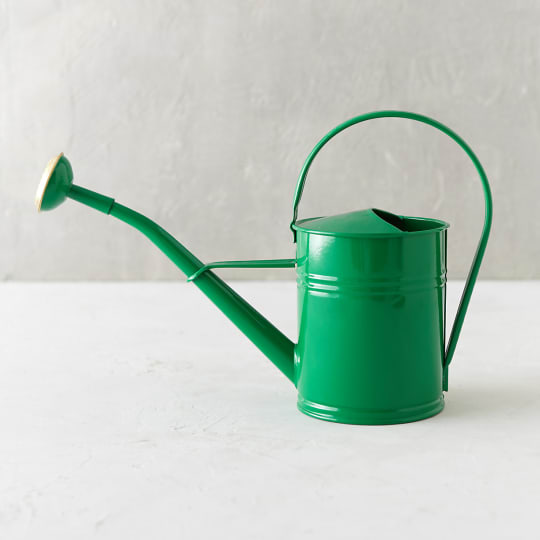 Color Pop Metal Watering Can