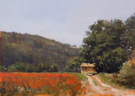 Poppy Field and Cabanon