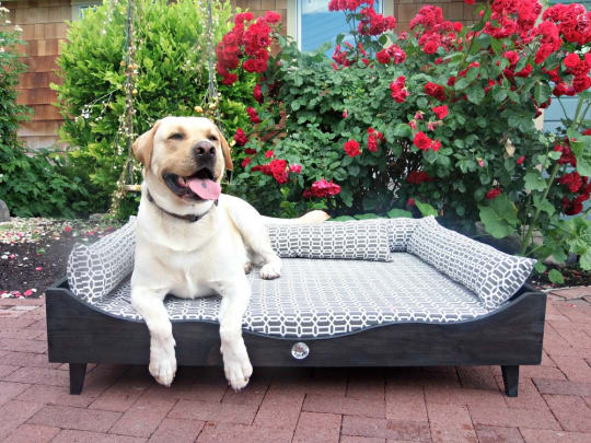 Old Town Pet Beds, Extra Large Bed
