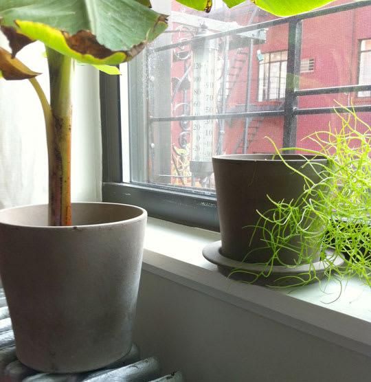 Mandel Plant Pots by Anne Nilsson
