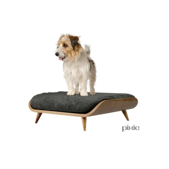 The Best Dog Beds For Design Lovers 2016 Cozy And Cute