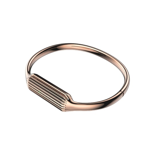 Fitbit Flex 2 Accessory Bangle