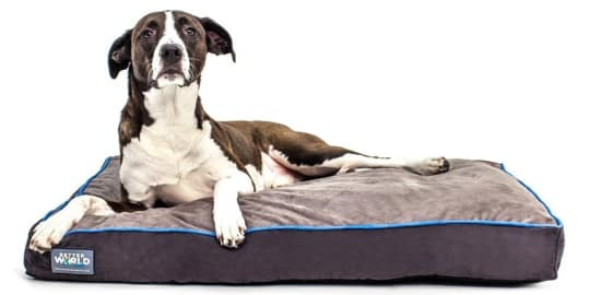 Better World Pets Orthopedic Dog Bed