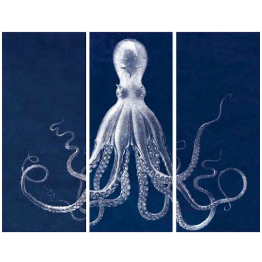 Lord Bodner's Octopus Triptych, in Blue
