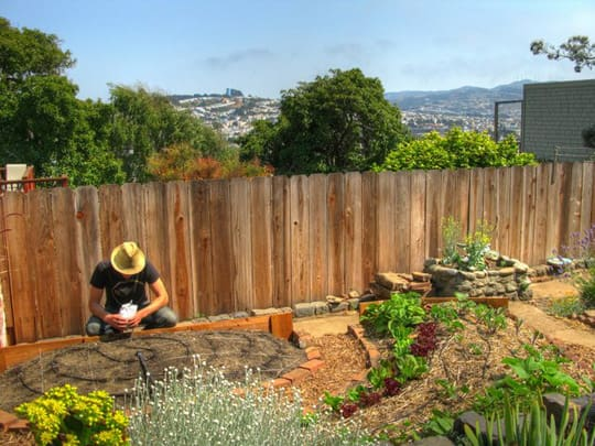 MyFarm Is A Group In San Francisco That Is Interested In Turning  Residential Backyards (and Frontyards) Into A Collection Of Urban Farms.