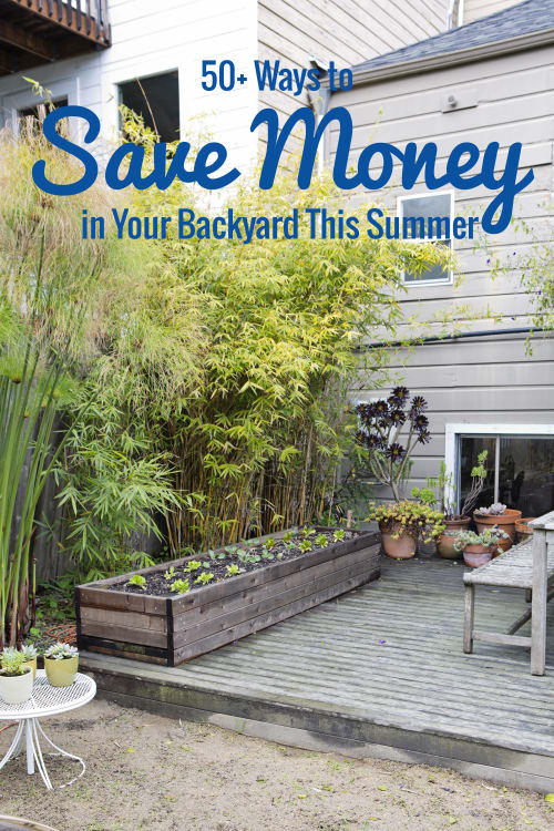 Backyard Ideas On A Budget Apartment Therapy