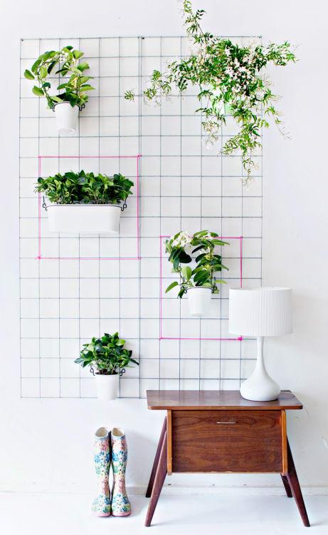 15 Indoor Garden Ideas For Wannabe Gardeners In Small Spaces - Indoor-garden-design-ideas