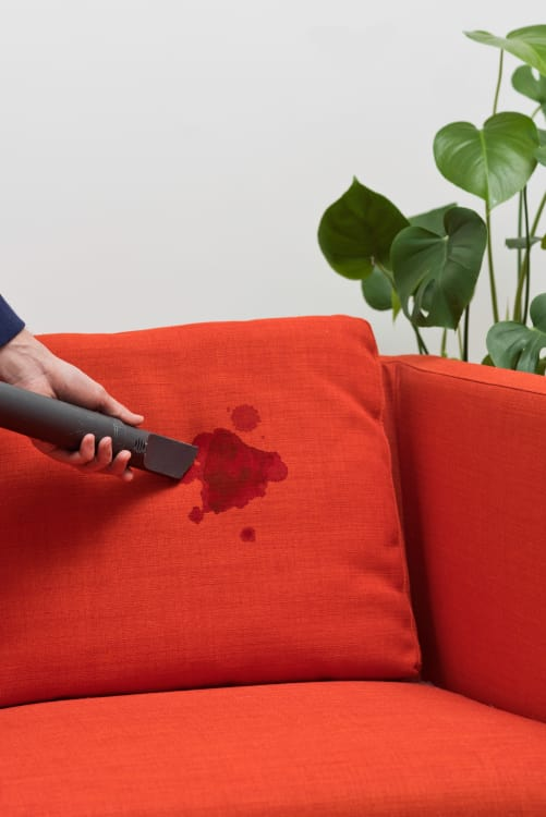 How To Clean Upholstery Even Set In Stains Apartment Therapy
