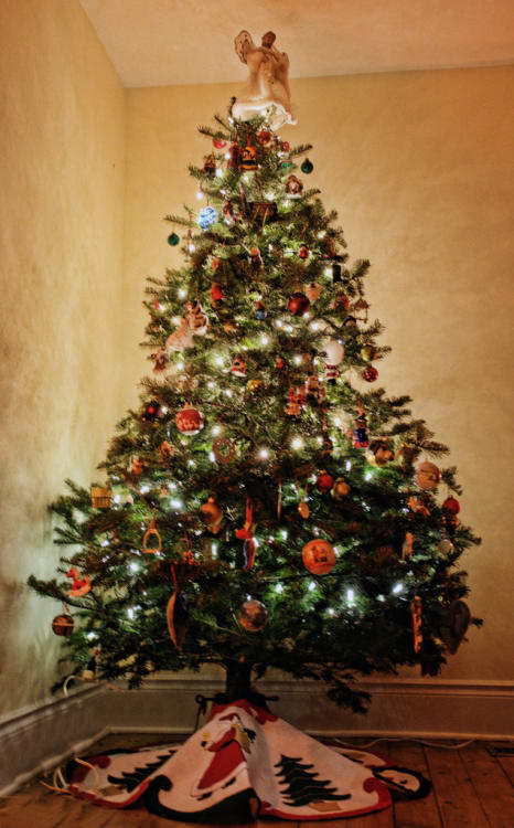 image credit flickr user bambe1964 under cc by 20 - Christmas Tree Com