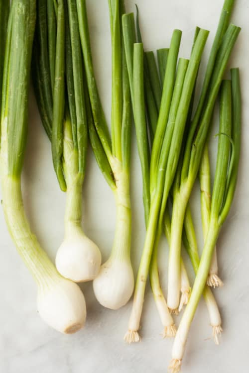 difference between scallions and green spring onions kitchn