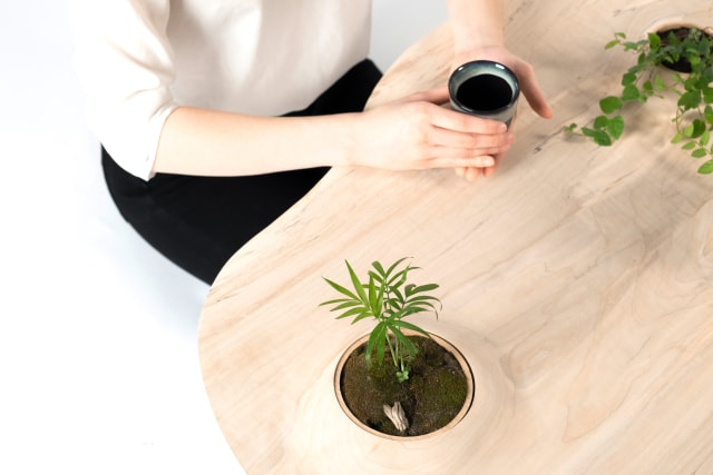 This Table Was Designed For Your Plant Babies