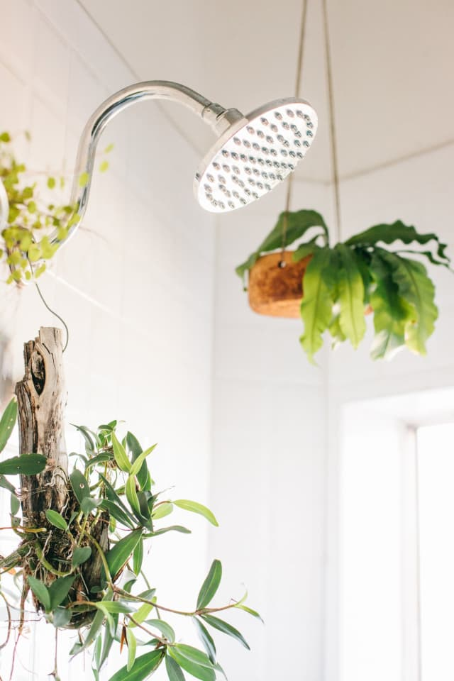 Rental Upgrades Temporary Projects Ideas Apartment Therapy
