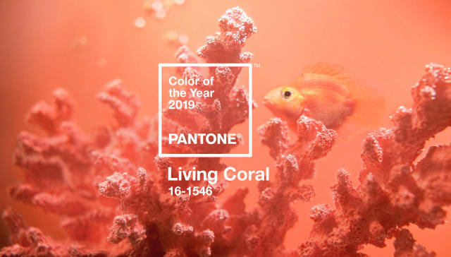 Bobby Berk, Emily Henderson, Jonathan Adler, and More of Our Faves Weigh In on Pantone's Color of the Year