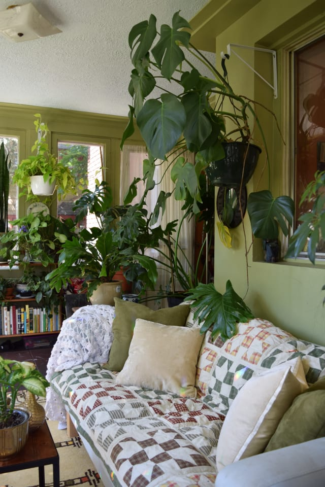 Natasha And The Plant Filled Sunroom Apartment Therapy