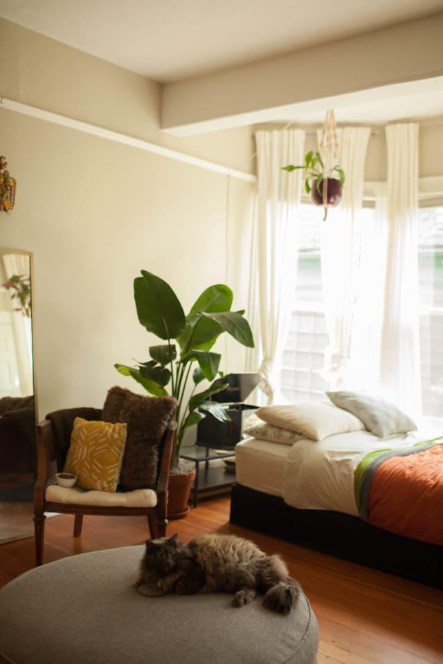 House Tour A Cozy Amp Refined Portland Studio Apartment