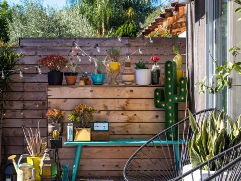 Win: $500 to Grow Your Dream Garden
