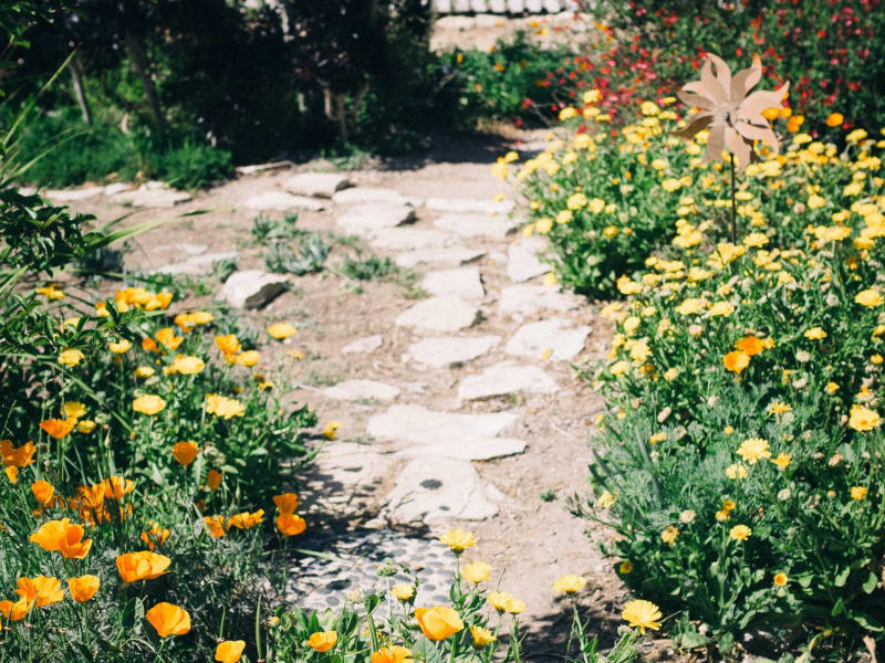 Planning Your Planting: Tips for Making a Garden Plan