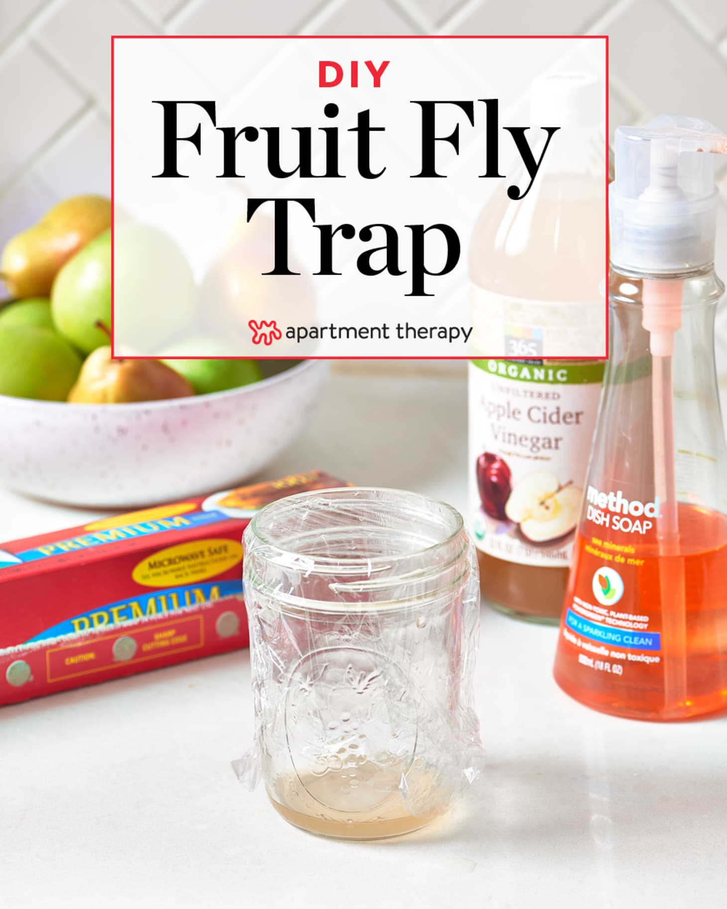 How To Get Rid Of Fruit Flies Apartment Therapy