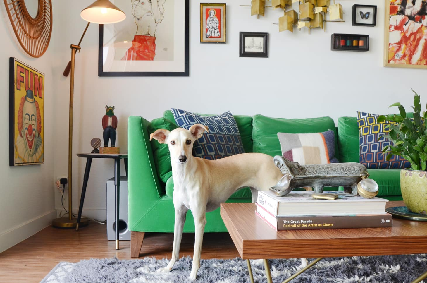 Best Sofa Fabrics for Pet Owners | Apartment Therapy