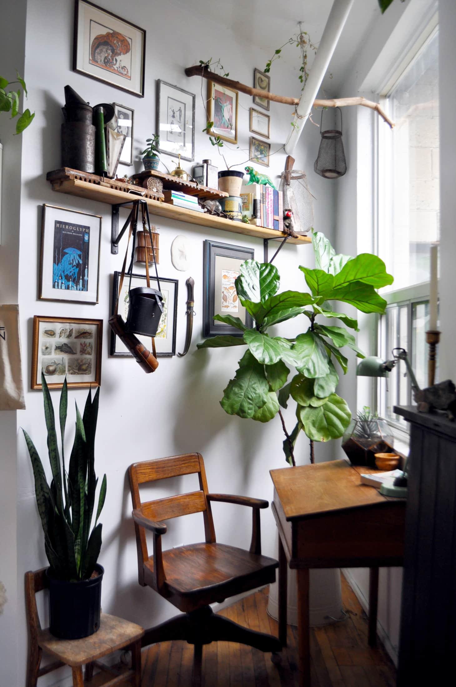 botanische studeerkamer