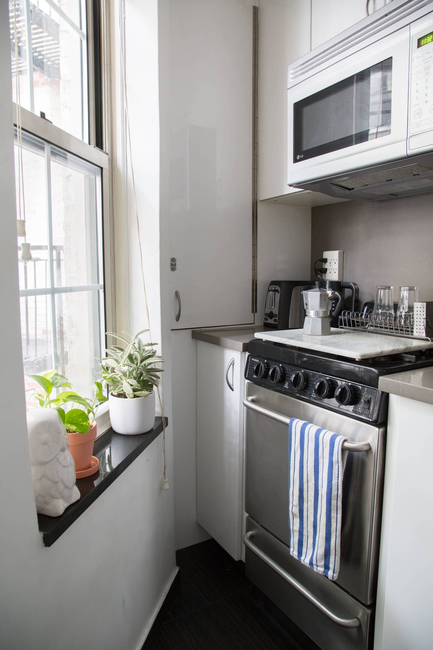 cozy kitchen with plants