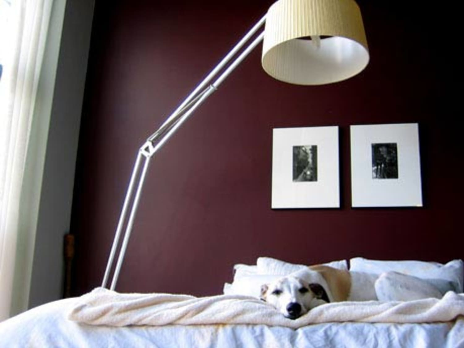 marvelous maroon color bedroom | Paint Color Portfolio: Burgundy Bedrooms | Apartment Therapy