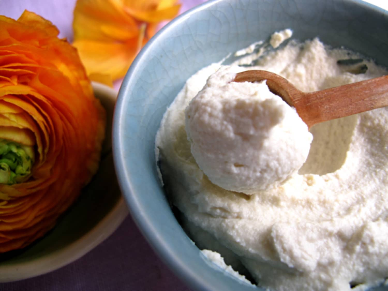 Two Vegan Mayonnaise Recipes   Kitchn
