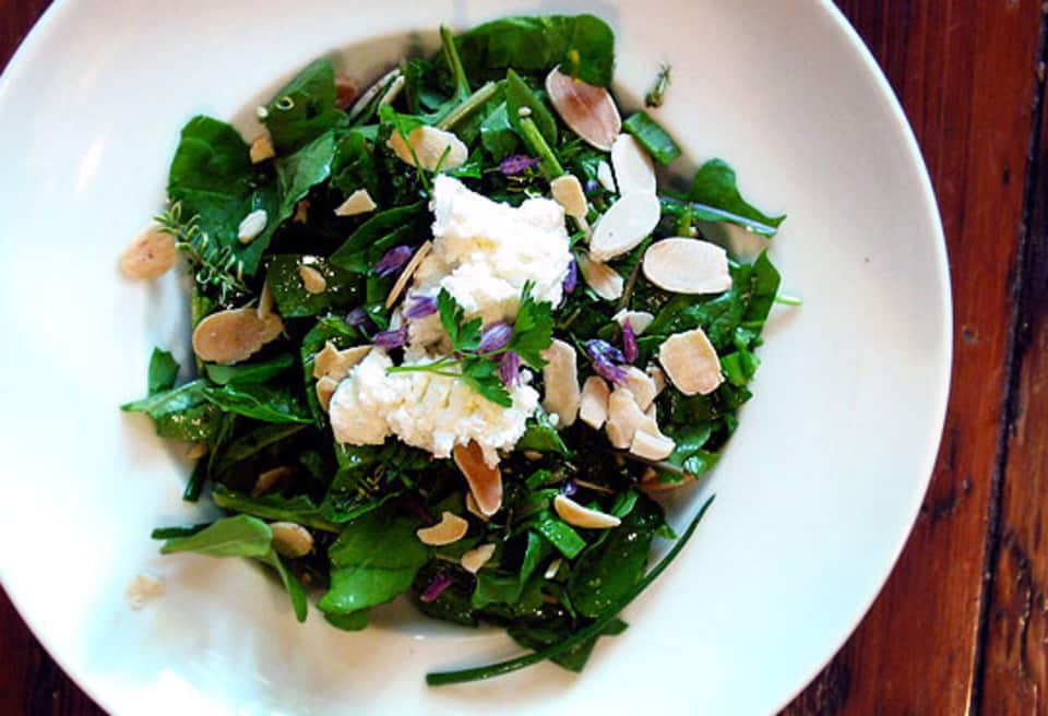 Meyer Lemon Spring Salad With Goat Cheese | Fresh Spring Salad Ideas To Savor This Season